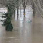 Hochwasser 2011 Frankfurt/Offenbach am Main
